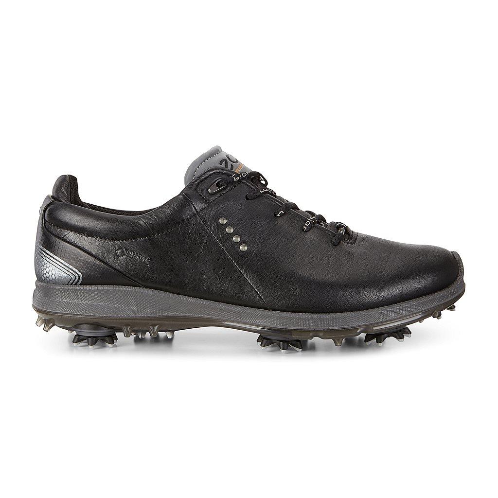 ECCO Men's BIOM G2 Gore-Tex GOLF Shoes Black